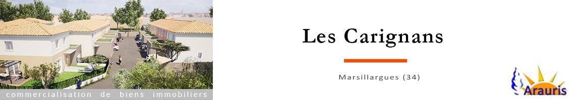 Arauris – 'Les Carignans'